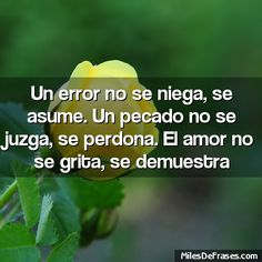 Frase: Un error no se niega, se asume. Un pecado no se juzga, se perdona. El amor no se grita, se demuestra  - Frases en foto gratis!