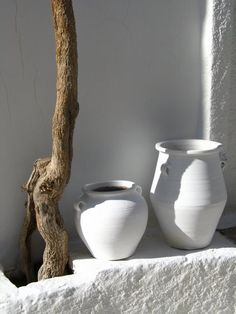 drift wood and white pottery Greek Garden, White Pot, Greek House, Garden Urns, Mediterranean Style, Wabi Sabi, Cool Ideas, Interior And Exterior, Pure Products