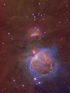 - The Great Orion Nebula (hubble Palette) Telescope Pictures, Space Shot, Orion Nebula, Hubble Space, Deep Space, Heavens, Far Away, Outer Space, Cosmos