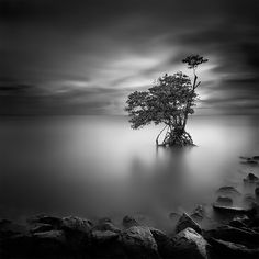 Black and White Long Exposure Photography by Will Le - 121Clicks.com