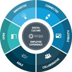 incipyemployee-experience