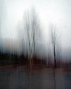 Abstract landscape forest photograph dreamy surreal by gbrosseau