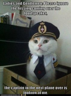Ladies and Gentlemen: Please ignore the hissing coming over the loudspeaker,  the captain in the next plane over is looking at me.