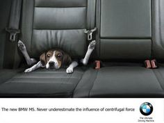 Definitely one of our top favorite BMW ads! - BMW M5 Funny Dog Ad