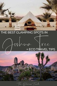 Are you planning a trip to Joshua Tree National Park and looking for some great camping and glamping places to stay at? We've listed the best glamping sights, vans, and unique Airbnb stays in the Joshua Tree area. Whether you want to go on hikes in the national park, check out the vintage stores, or have a beautiful accommodation for your photoshoot, we've got the tips for you! | #Joshuatree #glamping #ecoaccommodation California National Parks, Us National Parks, California Travel, Travel Oklahoma, Luxury Tents, Joshua Tree National Park, Travel Usa, Travel Tips, Travel Guides