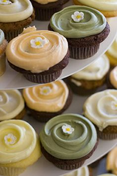 Earthy pastel icing...a photo of Cupcake Royale's cupcakes in the colors of muted sage, soft peach, and pale lemongrass