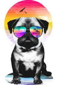 Summer Pug V. II