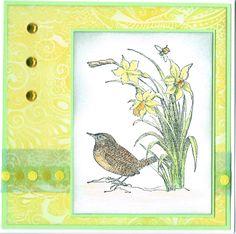 voorjaarskaart