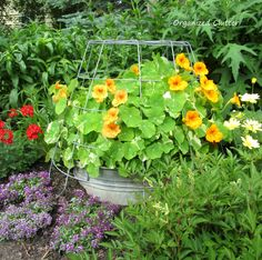 Organized Clutter: Garden Junk Ideas Galore 2014 Round Up Garden Whimsy, Garden Junk, Garden Yard Ideas, Garden Planters, Garden Gate, Glass Garden, Container Flowers, Garden Structures, Yard Art