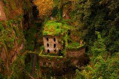 Overgrown, Sorrento, Italy