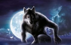 #andrewfarley #kidscornerillustration #illustration #digital #character #werewolf #moon
