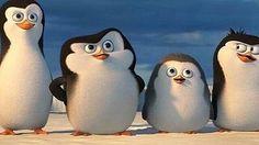 ザ・ペンギンズfromマダカスカルの画像 プリ画像