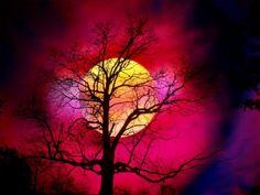 moon red sky