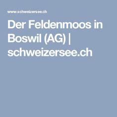 Der Feldenmoos in Boswil (AG) Seen, Switzerland