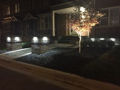 Landscape lighting to finish off you're dream Front Entrance . Front Entrances, Landscape Lighting, Curb Appeal, It Is Finished, Table Decorations, Furniture, Home Decor, Decoration Home, Room Decor