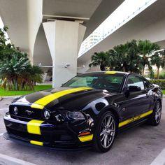 2014 Hertz Mustang Penske GT.