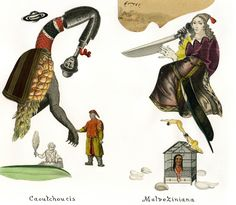 Livre 244 - Jabirus méconnus - Emmanuel Pierre, Artiste - Illustrateur