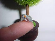 OOAK Dollhouse Miniature Pet Zebra Finch 1/6 Scale (Made to Order). $20.00, via Etsy.