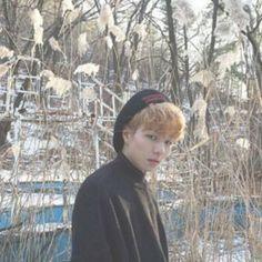 Taeyong (태영으로) | Seven O'Clock