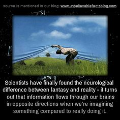 Scientists have finally found the neurological difference between fantasy and reality - it turns out that information flows through our brains in opposite directions when we're imagining something compared to really doing it. Interesting Science Facts, Cool Science Facts, Interesting Facts About World, Brain Science, Interesting Stuff, Wow Facts, Wtf Fun Facts, Strange Facts, Random Facts
