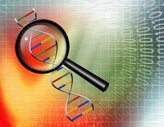 The Genealogy Do-Over - Week 10 Topics: 1) Reviewing DNA Testing Options and 2) Organizing Research Materials - Digital