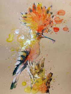 Удод  -    акварель  сингапурского  художника   Тилена  Ти.