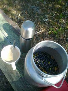 Kahvitauko mustikkametsässä | Kahvipannun taikaa -kuvakisa