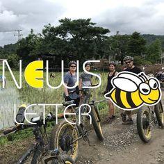 Buzzy Bee Bike Newsletter No. 10 (December 2020) 🐝 🚴♀️🚴🏼♂️ #buzzybeebike #chiangmai #thailand #ebike #ebiking #fatbike #fatbiking #cyclingtour #cycletour #cycling #electricbicycle #thailandtravel #lovethailand #amazingthailand #thailandholiday