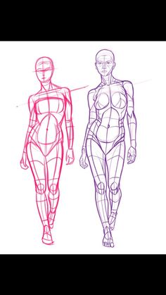 Learn to draw people - the female body anatomy reference & f Human Anatomy Drawing, Female Drawing, Human Figure Drawing, Figure Sketching, Gesture Drawing, Figure Drawing Reference, Body Drawing, Art Reference Poses, Anatomy Reference