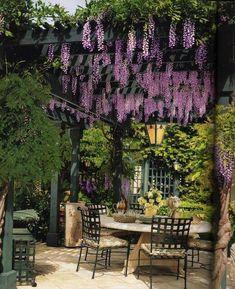 What a deliciously divine outdoor patio...the pergola with beautiful wisteria, and the yellow bouquet on the table...so pretty!