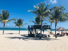 30 Best Now Larimar Punta Cana images in 2019   Now larimar punta