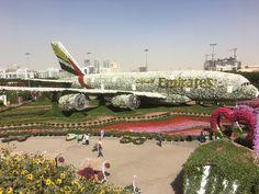 Was macht man eigentlich den ganzen Tag in Dubai?
