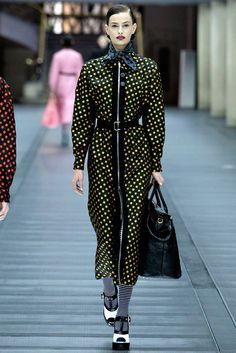 Miu Miu Fall 2013 Ready-to-Wear Fashion Show - Cassi Van Den Dungen (NEXT)