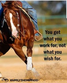 """""""Work until your idols become your rivals"""" horse quote Rodeo Quotes, Equine Quotes, Cowboy Quotes, Cowgirl Quote, Equestrian Quotes, Equestrian Problems, Western Quotes, Barrel Racing Quotes, Inspirational Horse Quotes"""