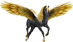 """Golden wing pegesus Right. """"Golden Winged Black Pegasus"""" created by/copyrighted to me: Artsieladie/Sharon Donnelly, artist/writer/poet http://artsieladie-heartbeats.blogspot.com"""