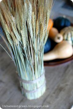 33 Shades of Green: Fall Craft: Wheat Bundle Tutorial Bible School Crafts, Bible Crafts, Fall Crafts, Holiday Crafts, Holiday Decorations, Diy Crafts, Table Decorations, Seasonal Decor, Centerpieces