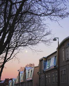 To the moon and back  . . . #vallila #puuvallila #myhelsinki #helsinki #visitfinland #visithelsinki #ig_finland #explorefinland #sunset #sunsetporn #pastels #moon #ourhelsinki #ourfinland #ig_helsinki #helsinkiofficial #finland_photolovers #igscandinavia #nordicphotos #ig_naturepics
