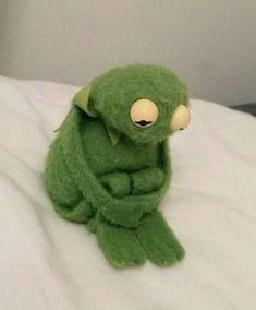 ✔ Memes Love Wallpaper Kermit The Frog Animal Jokes, Funny Animals, Meme Chat, Sapo Meme, Memes Lindos, Memes Gretchen, Current Mood Meme, Wattpad, Kermit The Frog