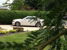 Ma voiture 5 août 2014 ....heureuse totalité paiement au 21 Juillet 2014 2013, Hui, Vehicles, Front Gardens, Fall, Automobile, Accessories, Vehicle, Tools