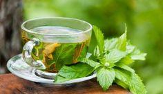 ¿Conoces de Los Beneficios del Te Verde? Descubre Como El Te Verde (Contenido en Protandim) Puede Ayudar a Tu Salud En Diversas Maneras.