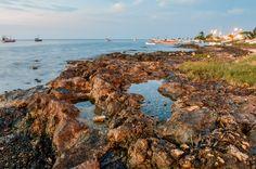 Bahia de Campeche - Campeche Landscapes