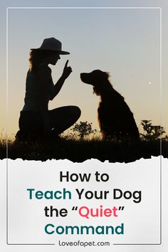 Dog Training Courses, Dog Training Videos, Training Dogs, Pet Dogs, Dogs And Puppies, Pet Pet, Doggies, Baby Beagle, Dog Care Tips