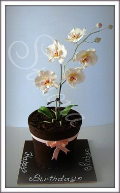 moth orchid cake by Simona SugArt, via Flickr