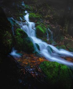 Life-giving Stream, by Nicolas Rhein..... #autumn #yellow #trees #leaves #forest #water #rock #rocks #fall #green #stone #germany #waterfall #longexposure #stream #moss #odenwald