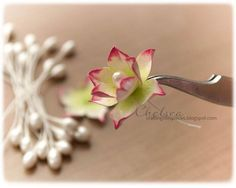 Crafting Life's Pieces: Baby Card and Lotus Flower Tutorial