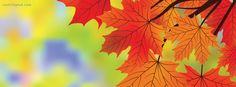 Autumn Dark Orange Leaves For Fall facebook cover CoverLayout.com