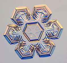 Photographs of real snowflakes reveal an even more amazing variety than you might have expected!