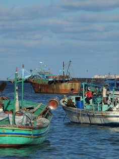Fishing boats Alexandria Egypt [shared]