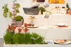 2015 Trends at Ambiente 2015 + Curiosity Humour