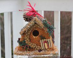Red House Garden: How to Make an Edible Birdhouse